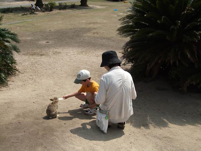 First Nibbles -- Okunoshima -- Takehara, Hiroshima Prefecture, Japan -- Copyright 2009 Hiromi