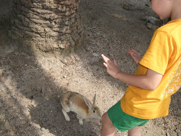 Whoa, Ran Out of Veggies, Sorry! -- Okunoshima -- Takehara, Hiroshima Prefecture, Japan -- Copyright 2009 Hiromi