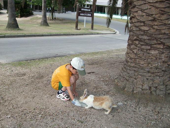 Restocked With Bunny Food Pellets -- Okunoshima -- Takehara, Hiroshima Prefecture, Japan -- Copyright 2009 Hiromi