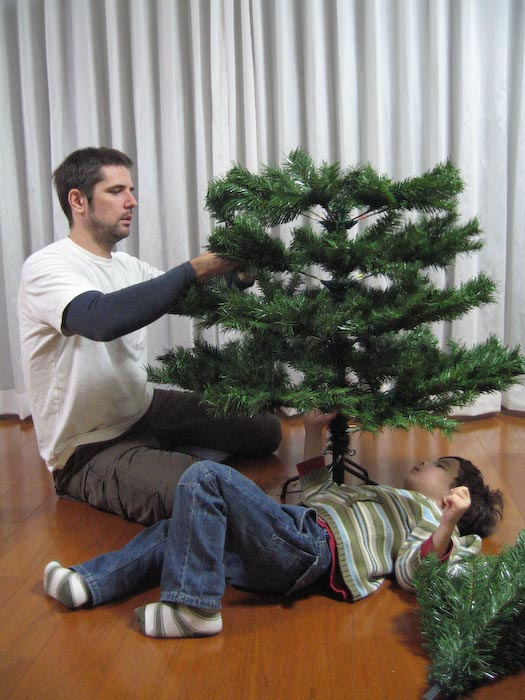Setting Up the Fake Tree -- Kyoto, Japan -- Copyright 2007 Jeffrey Eric Francis Friedl, http://regex.info/blog/
