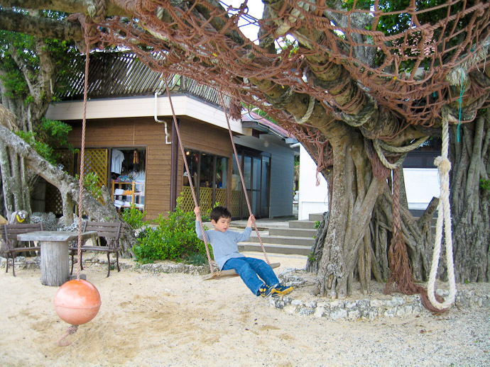 Spooky Tree and Swings -- Amami, Kagoshima, Japan -- Copyright 2008 Fumie