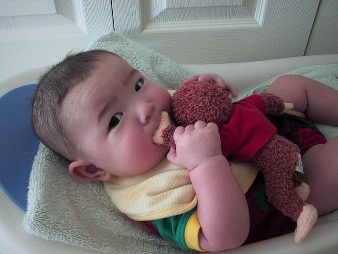 Four Months Old -- Copyright 2003 Jeffrey Friedl, http://regex.info/blog/