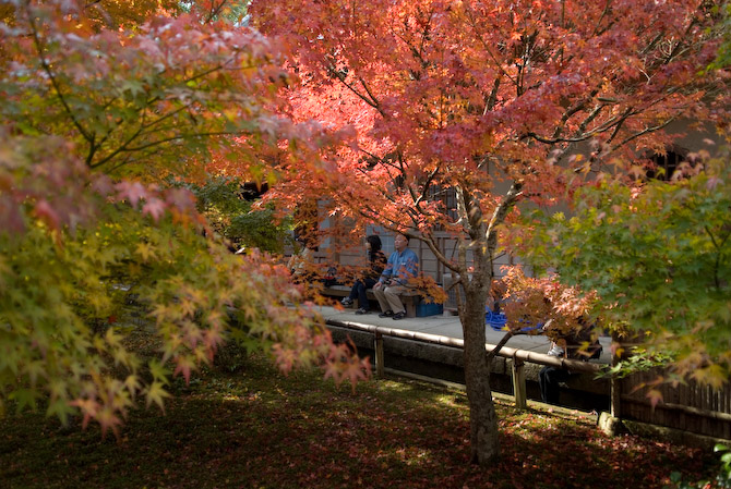 Nikon D200 + Nikkor 17 -55/2.8 @ 22mm — 1 / 250 sec, f/2.8, ISO 100 — full exif & map Relaxing at the Enkouji Temple -- Kyoto, Japan -- Copyright 2006 Jeffrey Eric Francis Friedl, http://regex.info/blog/