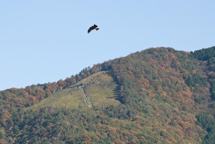 "Nikon D200 + Nikkor 70 -200mm f/2.8 @ 200mm — 1 / 250 sec, f/11, ISO 320 — full exif & map Daimonji: Big ""大"" on the Mountain -- Kyoto, Japan -- Copyright 2006 Jeffrey Eric Francis Friedl, http://regex.info/blog/"