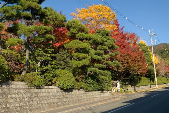 Pretty, Sort Of -- Kyoto, Japan -- Copyright 2006 Jeffrey Eric Francis Friedl, http://regex.info/blog/
