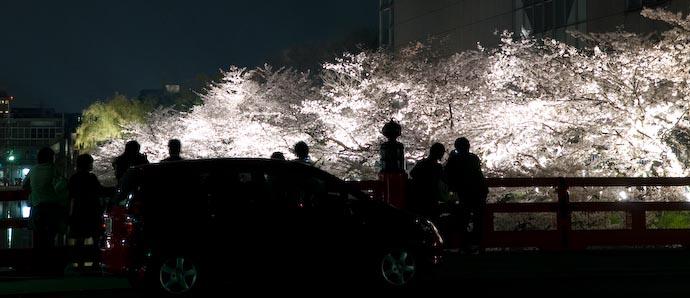 Cherry-Blossom Fireworks -- Kyoto, Japan -- Copyright 2007 Jeffrey Eric Francis Friedl, http://regex.info/blog/