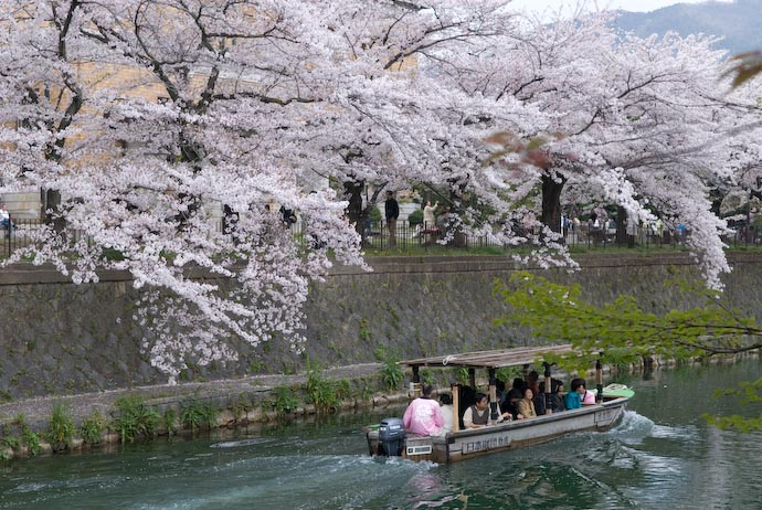 Hanami on the Water -- Kyoto, Japan -- Copyright 2007 Jeffrey Eric Francis Friedl, http://regex.info/blog/