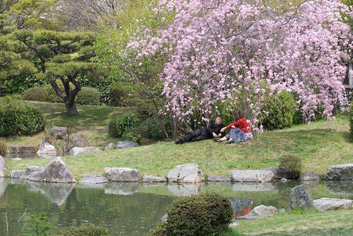 A couple enjoys the quiet solitude under the cherry blossoms, on the bank of the pond behind the Kyoto Municple Museum of Art (Kyoto, Japan, April 2007)