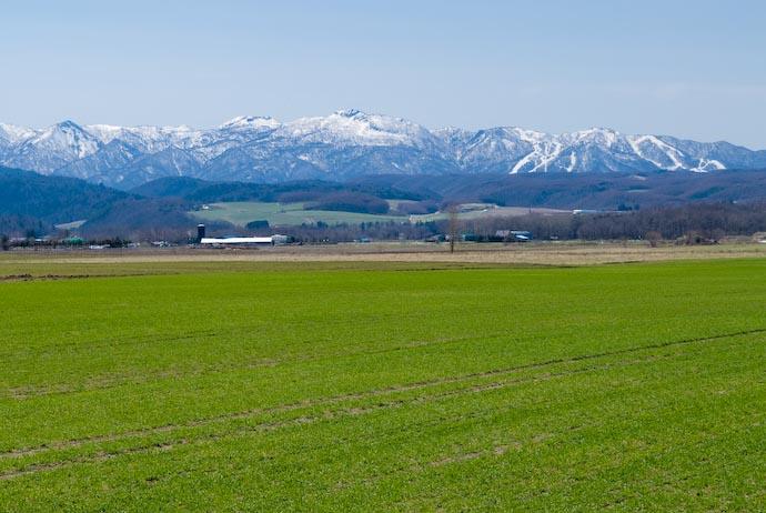 Hokkaido Countryside -- Furano, Hokkaido, Japan -- Copyright 2007 Jeffrey Eric Francis Friedl, http://regex.info/blog/