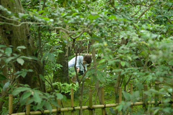 Tending the Moss -- Kyoto, Japan -- Copyright 2007 Jeffrey Eric Francis Friedl, http://regex.info/blog/