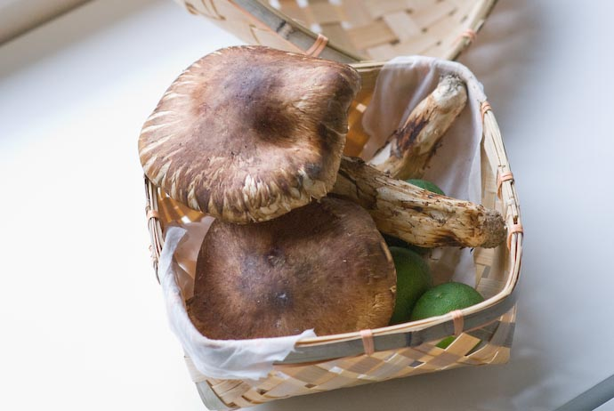 Priceless Matsutake Mushrooms — 松茸 -- Kyoto, Japan -- Copyright 2007 Jeffrey Eric Francis Friedl, http://regex.info/blog/