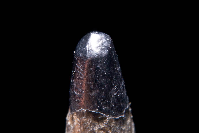 It's a Closeup of a Pencil Tip get my point? -- Rootstown, Ohio, USA -- Copyright 2007 Jeffrey Eric Francis Friedl