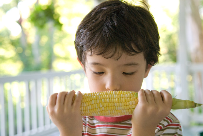 Fresh Corn Smells Good If you've never smelled really fresh corn, you have absolutely no idea what you're missing -- Rootstown, Ohio, USA -- Copyright 2007 Jeffrey Eric Francis Friedl