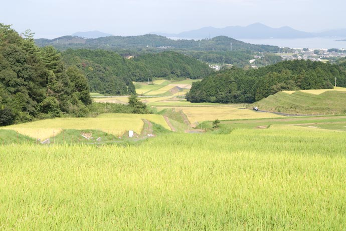 View from the Top -- Otsu, Shiga, Japan -- Copyright 2007 Jeffrey Eric Francis Friedl