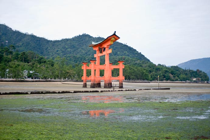 Sand &amp;middot; Seaweed &amp;middot; Water &amp;middot; Gate -- Miyajima, Hiroshima, Japan -- Copyright 2007 Jeffrey Eric Francis Friedl