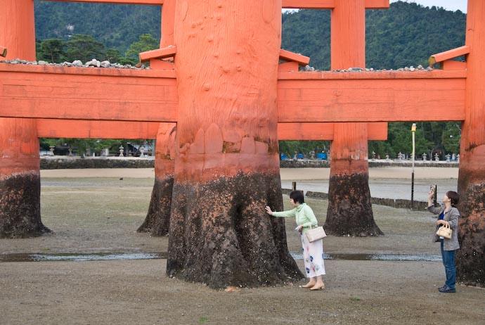 Solid -- Miyajima, Hiroshima, Japan -- Copyright 2007 Jeffrey Eric Francis Friedl