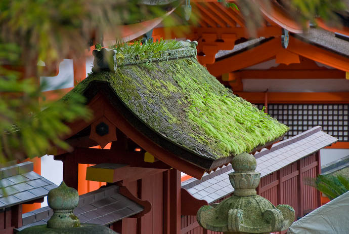 Roof In Need of a Trim At the Itsukushima Shrine, Miyajima, Japan -- Miyajima, Hiroshima, Japan -- Copyright 2007 Jeffrey Eric Francis Friedl