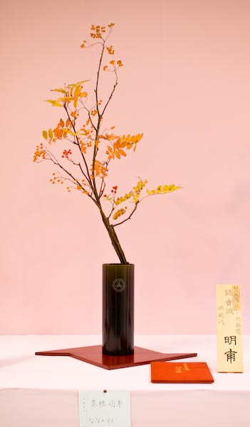 Japanese Rowan -- Kyoto, Japan -- Copyright 2007 Jeffrey Eric Francis Friedl