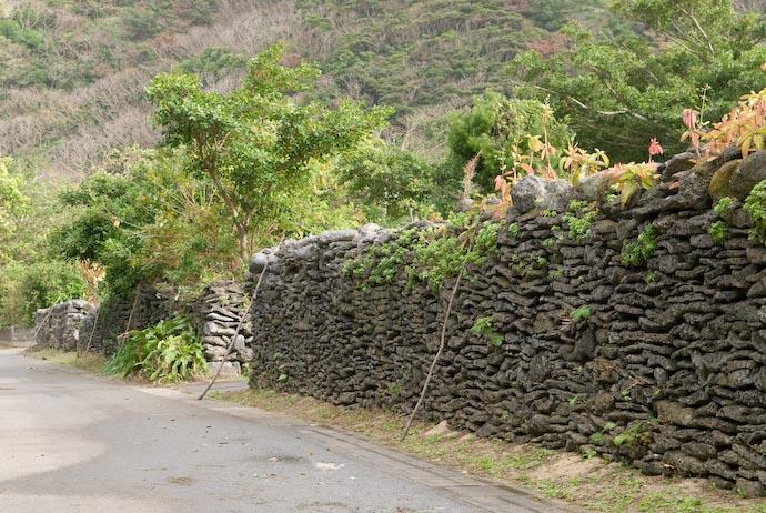 Old Walls of Coral and lots of sticks -- Kakeromajima (Amami), Kagoshima, Japan -- Copyright 2008 Jeffrey Eric Francis Friedl, http://regex.info/blog/