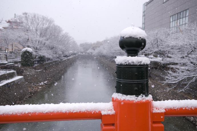 Sorta' Bland -- Kyoto, Japan -- Copyright 2008 Jeffrey Eric Francis Friedl