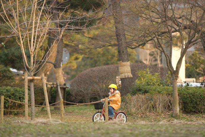 Far Side of the Park -- Kyoto, Japan -- Copyright 2008 Jeffrey Eric Francis Friedl