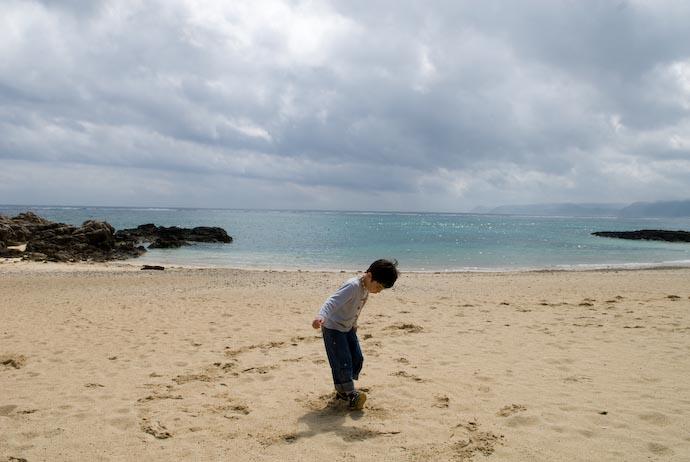 Amami Ooshima, Kagoshima, Japan -- Copyright 2008 Jeffrey Eric Francis Friedl