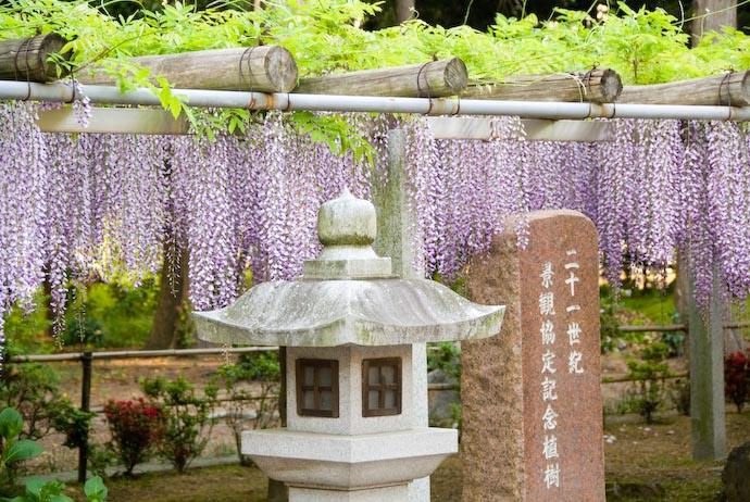 Kusatsu, Shiga, Japan -- Copyright 2008 Jeffrey Eric Francis Friedl, http://regex.info/blog/
