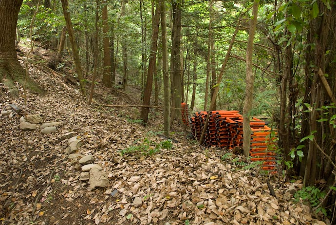 Large Stack of Freshly-Painted Gate Offerings lying – I have no idea why – at the top edge of a small ravine -- Kyoto, Japan -- Copyright 2008 Jeffrey Eric Francis Friedl, http://regex.info/blog/