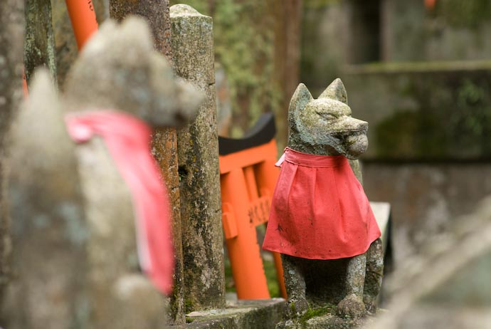 Lotsa' Foxes -- Kyoto, Japan -- Copyright 2008 Jeffrey Eric Francis Friedl, http://regex.info/blog/