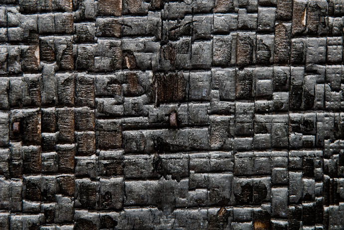 desktop background image of a wooden wall of an old Japanese garden, purposfully burnt to cinder (perhaps for aestetics, or to deter insect damage) -- Kyoto, Japan -- Copyright 2008 Jeffrey Eric Francis Friedl, http://regex.info/blog/