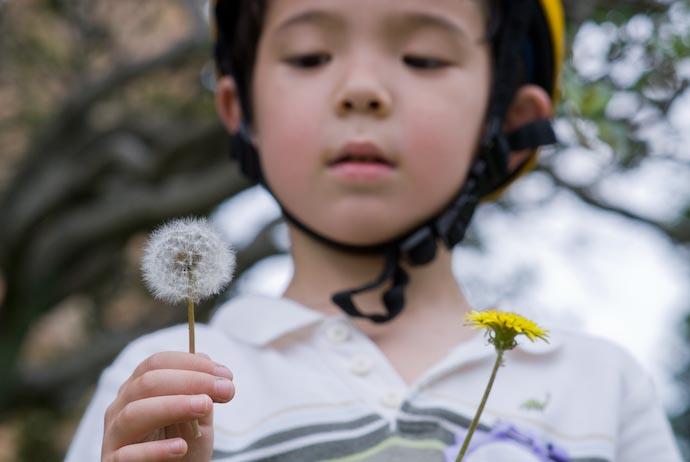 Piqued Interest -- Kyoto, Japan -- Copyright 2008 Jeffrey Eric Francis Friedl, http://regex.info/blog/