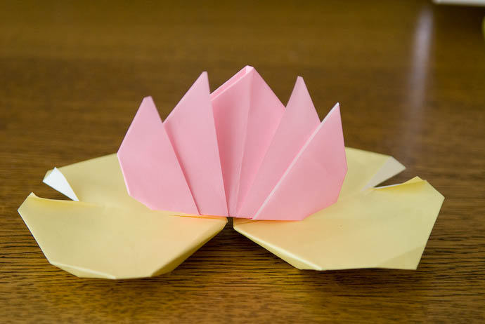 Origami Water Lily made by five-year-old Anthony -- Kyoto, Japan -- Copyright 2008 Jeffrey Eric Francis Friedl, http://regex.info/blog/