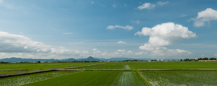 Rice Paddies 8:02 AM (+2h 35m) - 44 km (27.2 miles) taken while cycling at 27 kph (17 mph) -- Yasu, Shiga, Japan -- Copyright 2015 Jeffrey Friedl, http://regex.info/blog/ -- This photo is licensed to the public under the Creative Commons Attribution-NonCommercial 4.0 International License http://creativecommons.org/licenses/by-nc/4.0/ (non-commercial use is freely allowed if proper attribution is given, including a link back to this page on http://regex.info/ when used online)