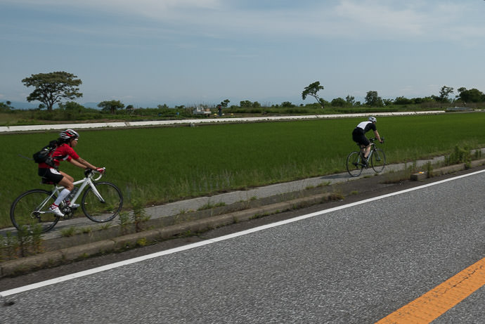 More Rice Paddies a common sight along much of the east side of the lake 9:09 AM (+3h 42m) - 67 km (41.5 miles) taken while cycling at 30 kph (19 mph) -- Hikone, Shiga, Japan -- Copyright 2015 Jeffrey Friedl, http://regex.info/blog/
