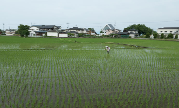 Labor-Intensive Farming 5:11 PM (+11h 44m) - 198 km (123.0 miles) taken while cycling at 29 kph (18 mph) -- Otsu, Shiga, Japan -- Copyright 2015 Jeffrey Friedl, http://regex.info/blog/