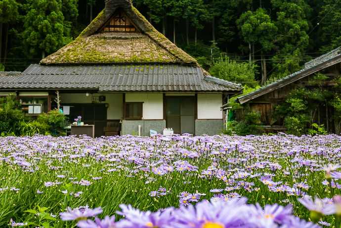 Old(ish) Farm House -- Kyoto, Japan -- Copyright 2015 Jeffrey Friedl, http://regex.info/blog/