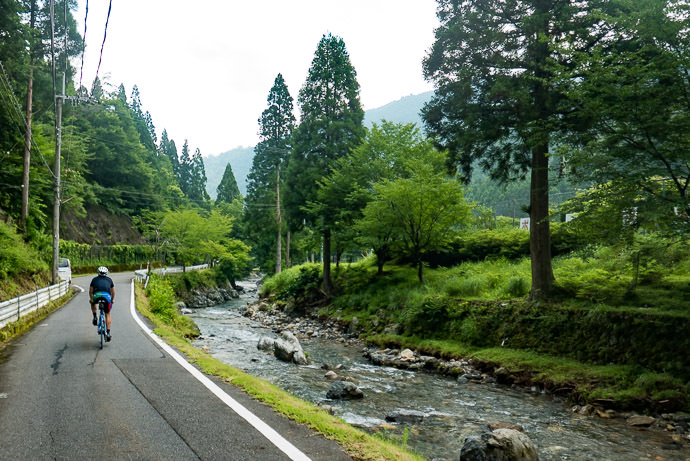 Lovely Scenery taken while riding at 33 kph (21 mph) -- Kyoto, Japan -- Copyright 2015 Jeffrey Friedl, http://regex.info/blog/