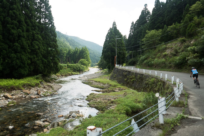 taken while moving at 32 kph (20 mph) -- Takashima, Shiga, Japan -- Copyright 2015 Jeffrey Friedl, http://regex.info/blog/