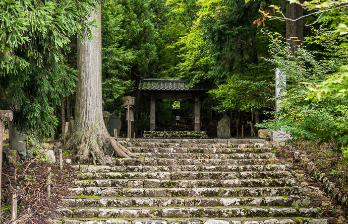 Heading Up Sarah is a white smudge in the middle of the frame -- Joshokoji Temple (常照皇寺) -- Kyoto, Japan -- Copyright 2015 Jeffrey Friedl, http://regex.info/blog/ -- This photo is licensed to the public under the Creative Commons Attribution-NonCommercial 4.0 International License http://creativecommons.org/licenses/by-nc/4.0/ (non-commercial use is freely allowed if proper attribution is given, including a link back to this page on http://regex.info/ when used online)