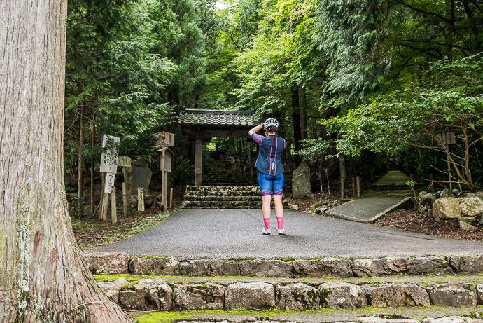 Not Waiting Any More -- Joshokoji Temple (常照皇寺) -- Kyoto, Japan -- Copyright 2015 Jeffrey Friedl, http://regex.info/blog/