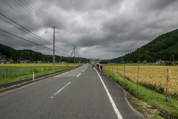 Quintessential Rural Kyoto taken while cycling at 33 kph (21 mph) -- Kyoto, Japan -- Copyright 2015 Jeffrey Friedl, http://regex.info/blog/