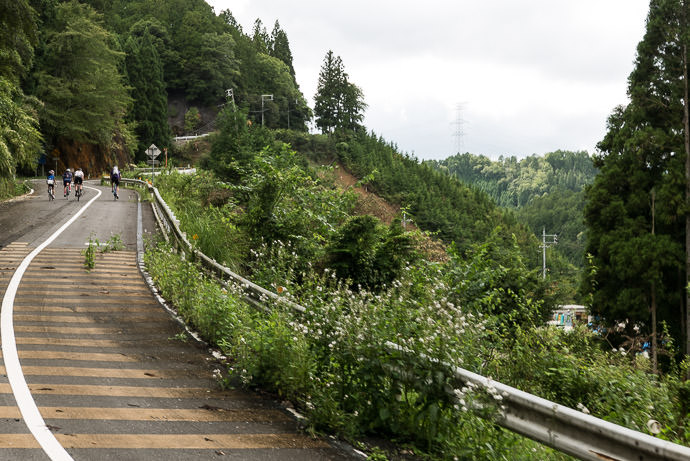 Why Go Through a Tunnel when you can take a steep, twisty, ill-maintained road over it? taken while cycling at 23 kph (14 mph) -- Kyoto, Japan -- Copyright 2015 Jeffrey Friedl, http://regex.info/blog/