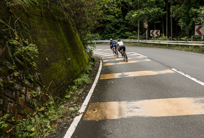 Fast Downhill on Rt 162 taken while cycling at 49 kph (30 mph) -- Kyoto, Japan -- Copyright 2015 Jeffrey Friedl, http://regex.info/blog/