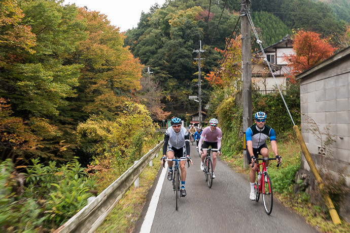 Typical Japanese Country Scene beautiful nature, utility pole, cinderblock wall, cyclists 10:54am - taken while riding at 28 kph (17 mph) -- Kyoto, Japan -- Copyright 2015 Jeffrey Friedl, http://regex.info/blog/
