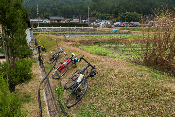 Bicycle Parking -- Kyoto, Japan -- Copyright 2015 Jeffrey Friedl, http://regex.info/blog/