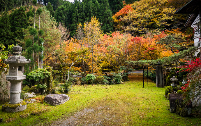 "desktop background image of a fall-foliage scene in Kyoto, Japan -- Random House's Yard near the "" Hidden Treasure "" garden from the first photo -- Copyright 2015 Jeffrey Friedl, http://regex.info/blog/ -- This photo is licensed to the public under the Creative Commons Attribution-NonCommercial 4.0 International License http://creativecommons.org/licenses/by-nc/4.0/ (non-commercial use is freely allowed if proper attribution is given, including a link back to this page on http://regex.info/ when used online)"