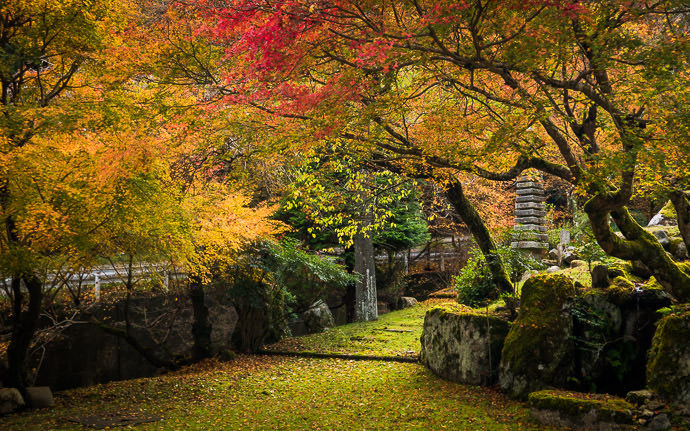 desktop background image of a fall-foliage scene in Kyoto, Japan -- Hidden Treasure photo from last fall 去年の秋 -- Copyright 2015 Jeffrey Friedl, http://regex.info/blog/ -- This photo is licensed to the public under the Creative Commons Attribution-NonCommercial 4.0 International License http://creativecommons.org/licenses/by-nc/4.0/ (non-commercial use is freely allowed if proper attribution is given, including a link back to this page on http://regex.info/ when used online)