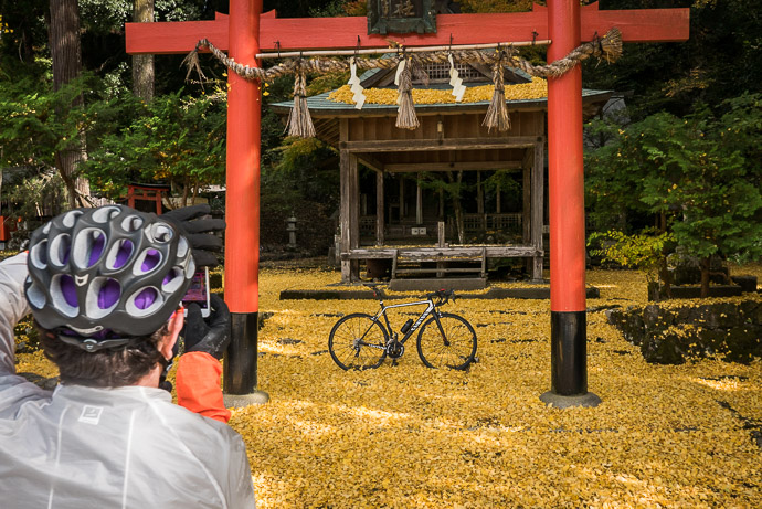 Andy Photographs his ROTOR Chainrings along with the rest of his fine steed -- Iwato Ochiba Shrine (岩戸落葉神社) -- Kyoto, Japan -- Copyright 2015 Jeffrey Friedl, http://regex.info/blog/