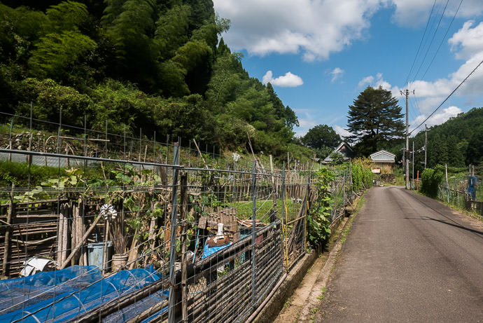 Makeshift Fences to keep wild animals away from their gardens -- Uji, Kyoto, Japan -- Copyright 2016 Jeffrey Friedl, http://regex.info/blog/ -- This photo is licensed to the public under the Creative Commons Attribution-NonCommercial 4.0 International License http://creativecommons.org/licenses/by-nc/4.0/ (non-commercial use is freely allowed if proper attribution is given, including a link back to this page on http://regex.info/ when used online)