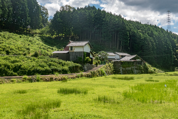 """Impressive Farmstead which appeared in Part One of """" Pleasant Little Village in Uji """" five years ago -- Uji, Kyoto, Japan -- Copyright 2016 Jeffrey Friedl, http://regex.info/blog/ -- This photo is licensed to the public under the Creative Commons Attribution-NonCommercial 4.0 International License http://creativecommons.org/licenses/by-nc/4.0/ (non-commercial use is freely allowed if proper attribution is given, including a link back to this page on http://regex.info/ when used online)"""
